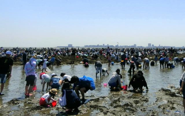 東京近郊で潮干狩り 千葉県「ふなばし三番瀬海浜公園」親子で楽しめました♪